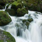 'ימי בראשית' – על המבול