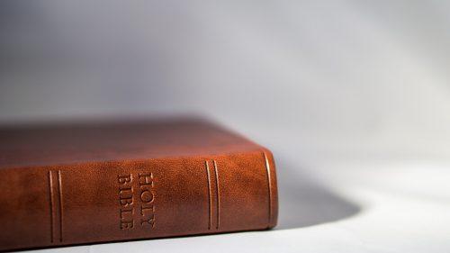 הרב חיים מצגר: סדר ומבנה בחמשה חומשי תורה